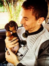 Perros de famosos: Destino, el cachorro de Teckel de Jorge Lorenzo