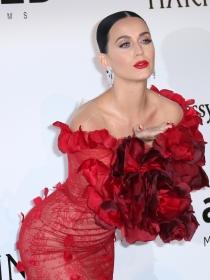Katy Perry, la nueva flamenca del Whatsapp en Cannes 2016