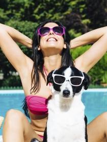Qué hacer con las mascotas en vacaciones