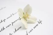 Enamórale con un poema de lo más romántico
