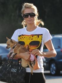 Paris Hilton: ¡no sin mi perro!