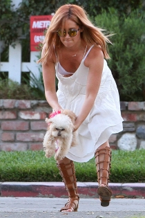 El sujetador de Ashley Tisdale