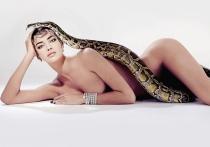 Irina Shayk nos dejó sin palabras cuando posó con una serpiente