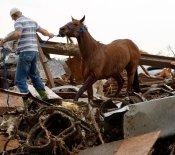 Pesadilla en Oklahoma: vidas destrozadas sin necesidad de morir
