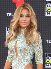 Los 7 mejores looks de la red carpet de los Latin AMAs 2015