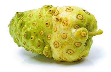Noni, fruta medicinal, nutritiva y desconocida