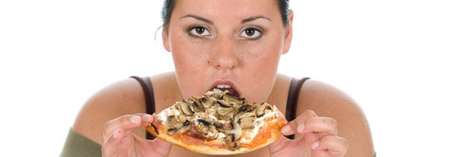 Obesidad: factores nutricionales y estilo de vida