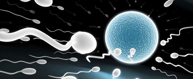 Preguntas más frecuentes sobre la ovulación y días fértiles