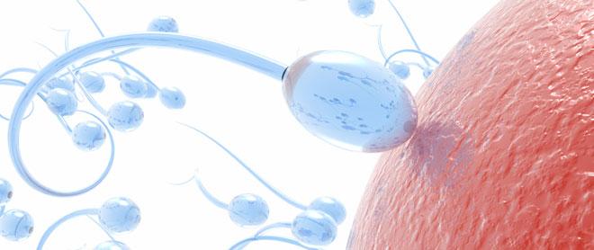 Método Billings para identificar los días fértiles