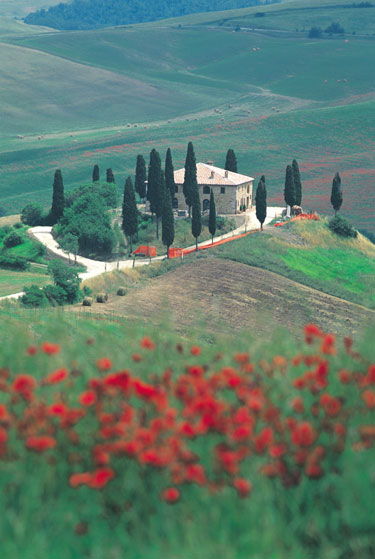 Paseos entre copas de vino Chianti. La comida toscana
