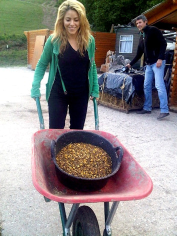 Shakira hace de granjera en gerona