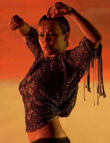 escena de flamenco, flamenco