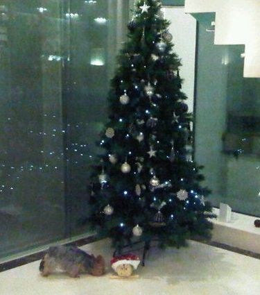 Árbol de Navidad de Cesc Fábregas