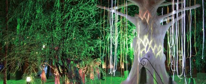 El gélido bosque de 'Avatar'