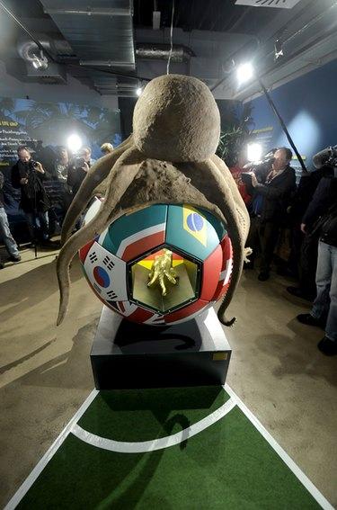 El pulpo Paul, el héroe del Mundial de Sudáfrica, homenajeado con un monumento