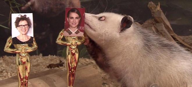 momento de la eleccion de Natalie Portman