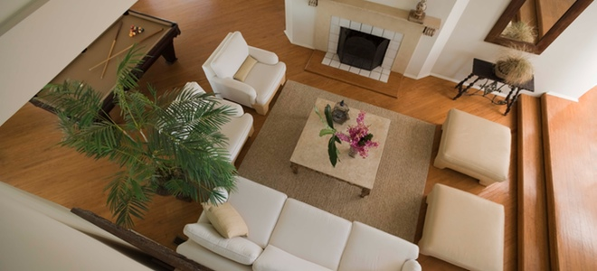 Alegra tu hogar con plantas de coloridas flores