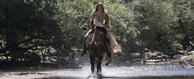fotograma caballo