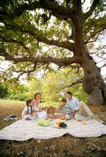 Resultado de imagen de picnic en el campo