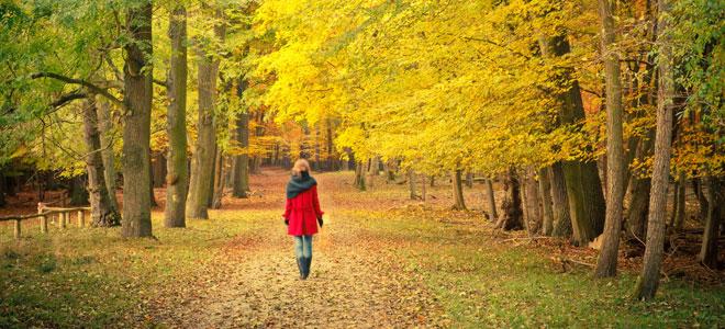 Típicas enfermedades de otoño