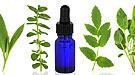 Tipos de medicamentos de la homeopatía