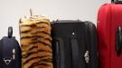 Han perdido mis maletas en el aeropuerto, ¿qué hacer y cómo reclamar?