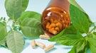 Té verde, fucus o guaraná: las plantas medicinales que ayudan a perder peso