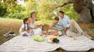 Nos vamos de picnic: guía para hacer una comida en el campo