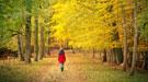 Las enfermedades del otoño: llegó el cambio de temperatura
