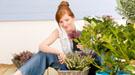 Cómo y cuándo cambiar una planta a una maceta mayor