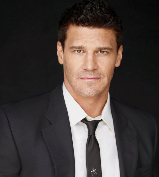 Denuncian a David Boreanaz, actor de 'Bones', por acoso sexual