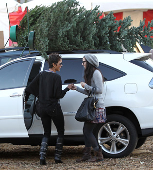 Halle Berry, feliz comprando un enorme árbol de Navidad