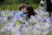 'Eclipse': amor entre las flores