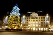 Árbol de Navidad en Amsterdam, Holanda