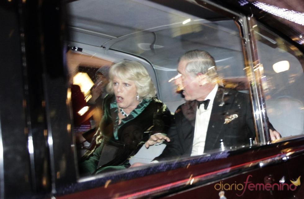 Carlos de Inglaterra y Camilla Parker, atacados por estudiantes británicos