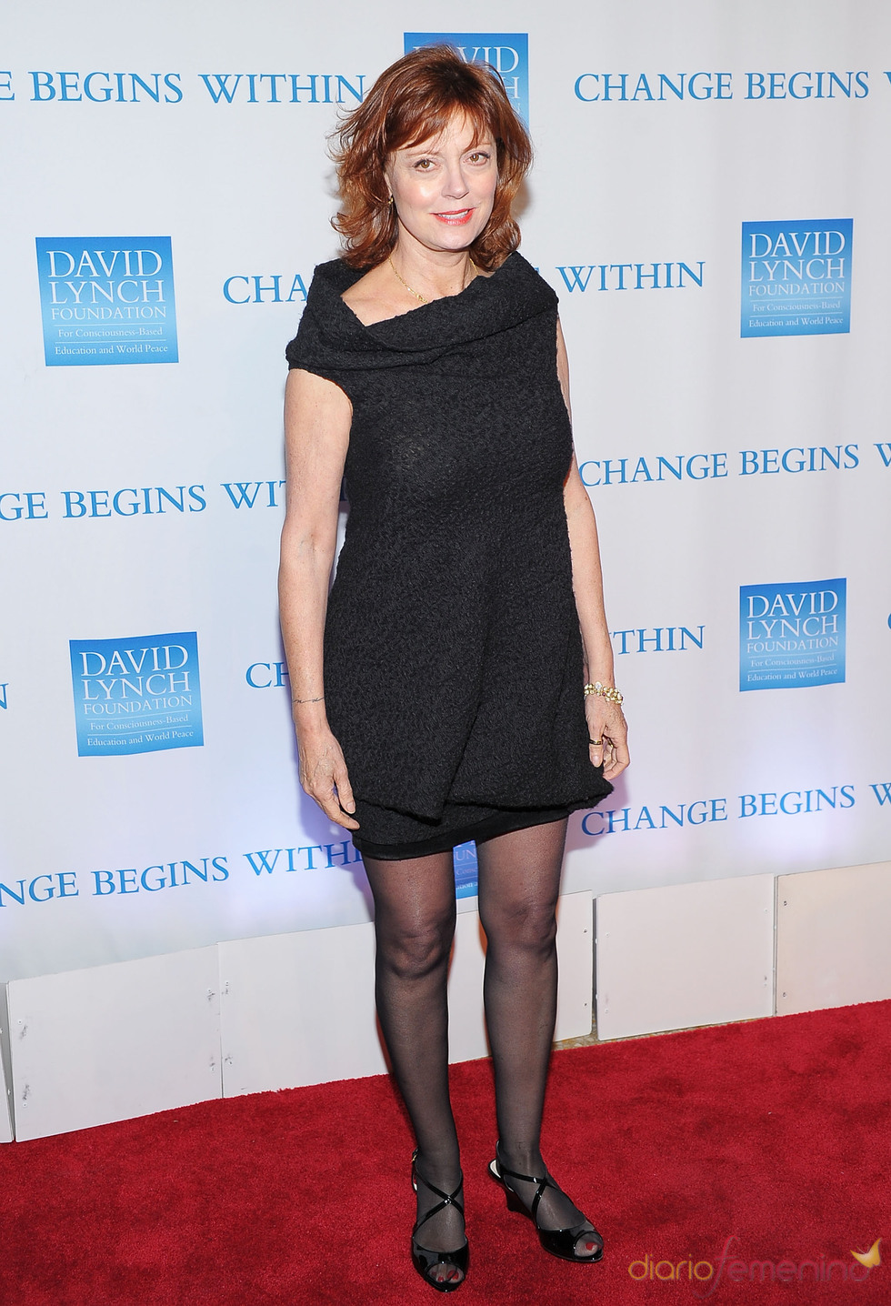 Susan Sarandon en la gala benéfica 2010 de David Lynch