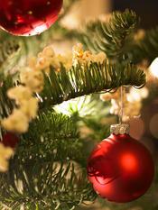 Bolas rojas para decorar el árbol de Navidad