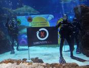 Jorge Lorenzo se despide del 2010 entre tiburones