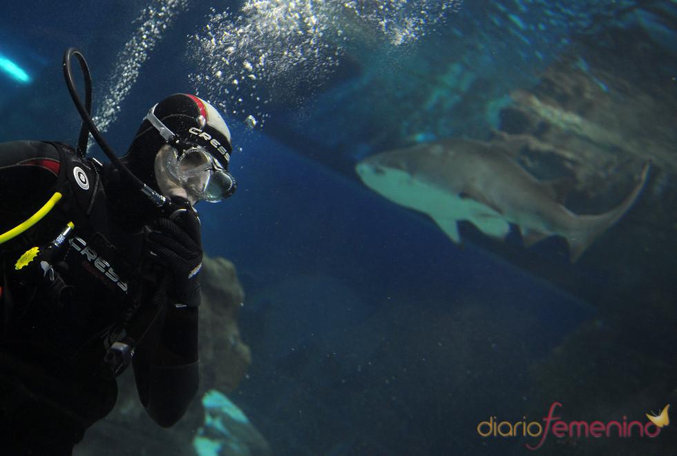Jorge Lorenzo nos desea un feliz 2011 entre tiburones