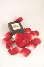 Pétalos de rosa para San Valentín
