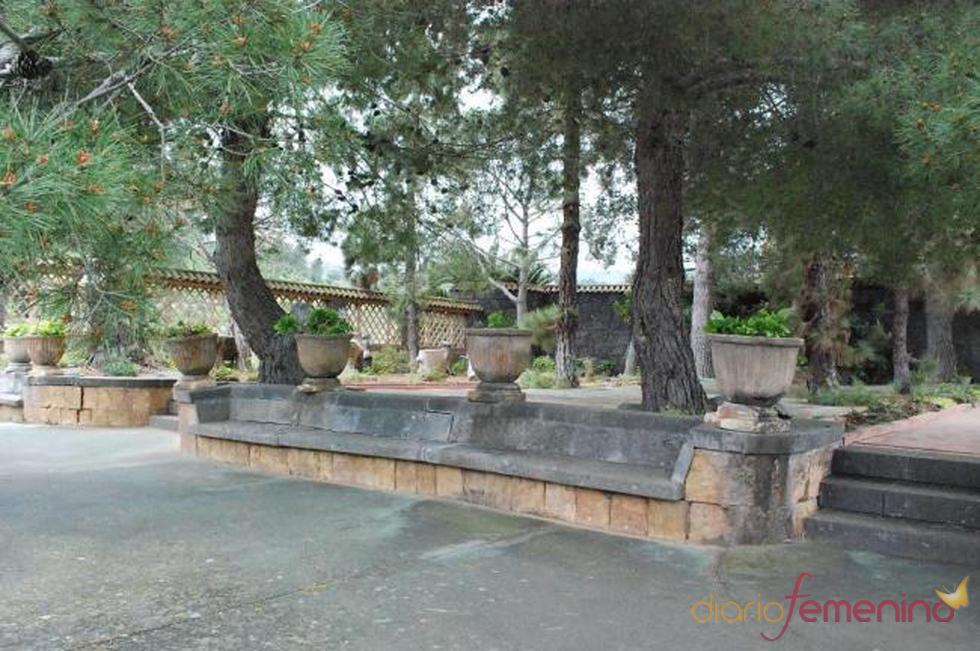 Zona de árboles de la posible futura mansión de Fernando Alonso y Raquel del Rosario