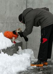 Hugh Jackman rescata a su perrito de la nieve de Nueva York