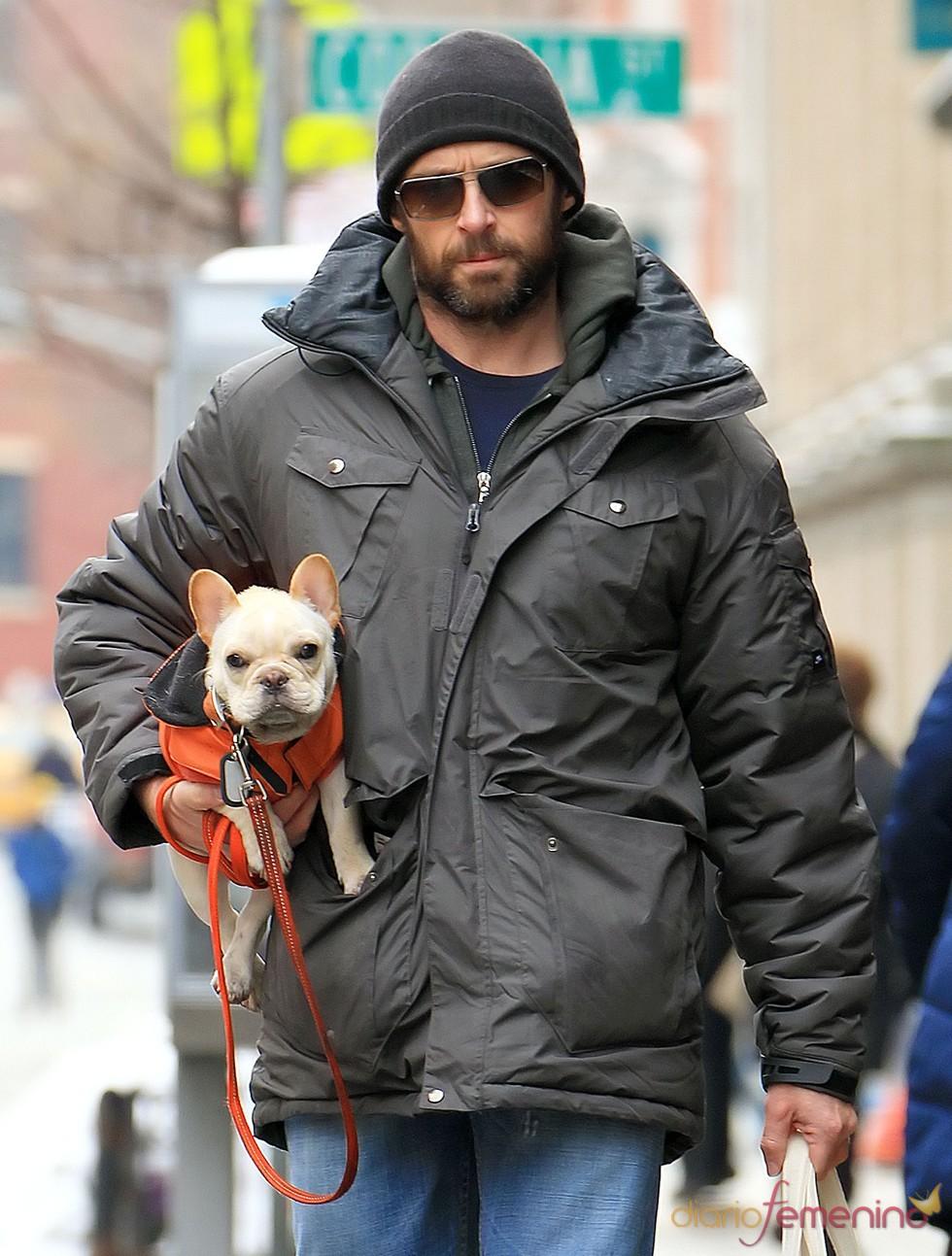 Hugh Jackman acompañado de su perrito Mocha