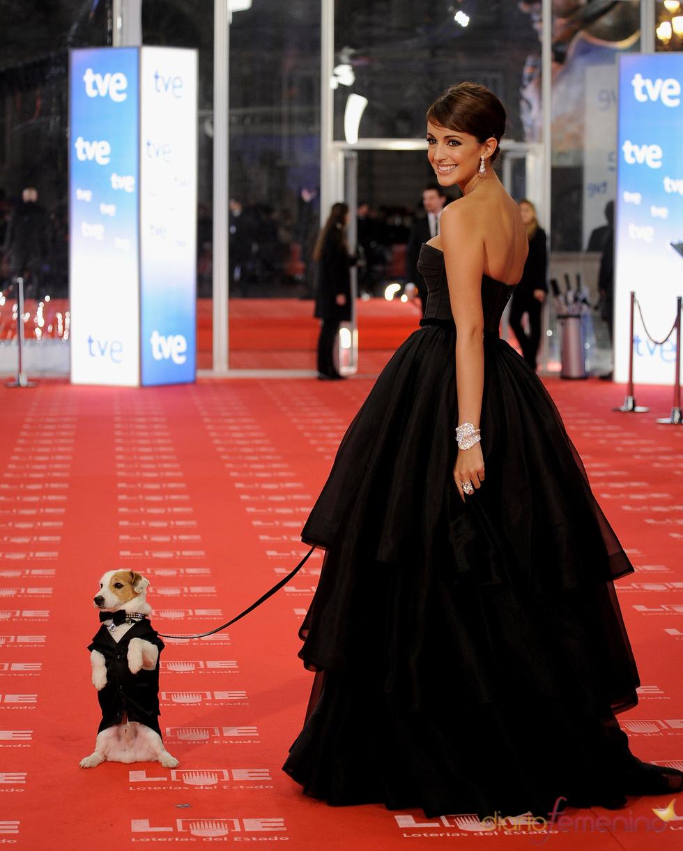 Pancho se siente atraído por los flashes en la alfombra roja de los Goya 2011