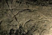 Cueva de los Casares, viaje por La Alcarria