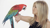 Jennifer Aniston con un loro en el anuncio de Smart Water
