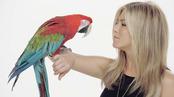 Jennifer Aniston con un loro en el anuncio de Smart Water
