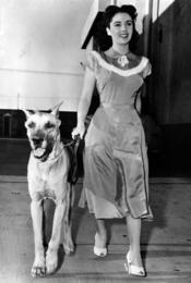 Elisabeth Taylor en 1948