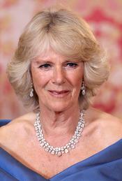 Camilla Parker Bowles en la cena de gala del Palacio Real