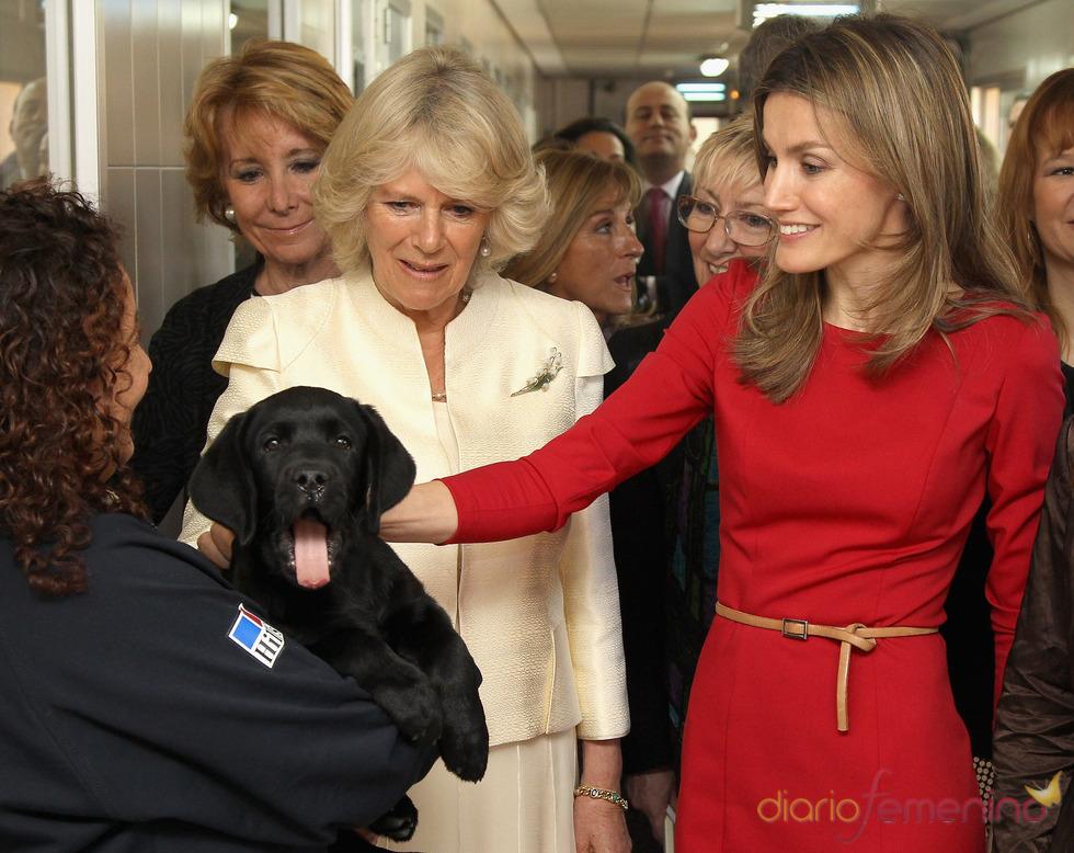 La Princesa de Asturias y la Duquesa de Cornualles en la Fundación ONCE